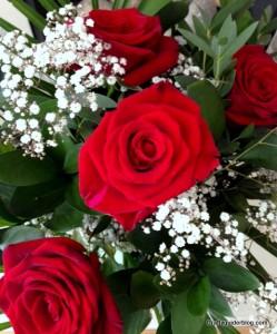 anniversary roses